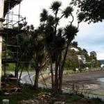 White House Hotel Blick auf die Bucht , Dunedin New Zealand